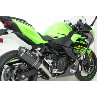 All KAWASAKI on sale in June!
